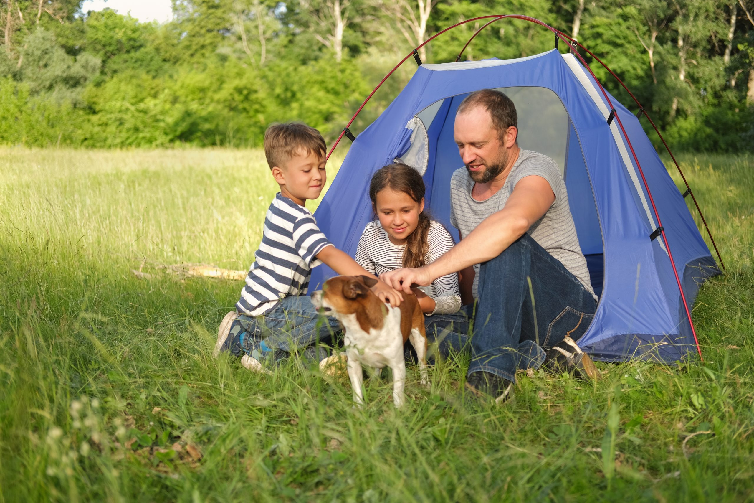 Best Rated Tents for Families